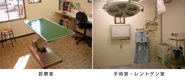 診察室、手術室・レントゲン室